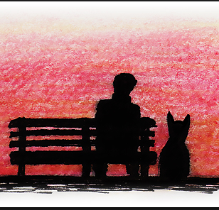 Verter, la panchina e il cane